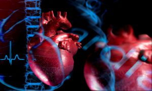 cardio_header