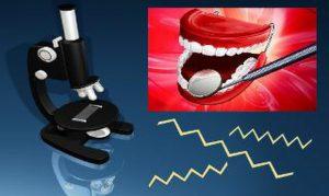 dental_header